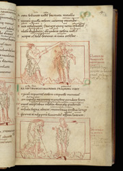 Coloured-Line Drawings Of Wrath And Long-Suffering, In Prudentius, Psychomachia